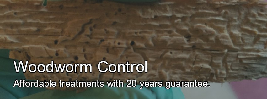 Woodworm Control Derby